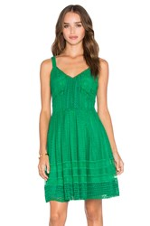 Greylin Calissa Lace Dress Green