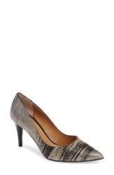 J. Renee Women's 'Canaro' Pointy Toe Pump Black Silver Fabric