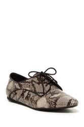 Penny Loves Kenny Lace Up Flat Metallic