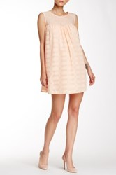 Champagne And Strawberry Embroidered Shift Dress Pink