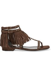 Saint Laurent Studded Fringed Suede Sandals Dark Brown