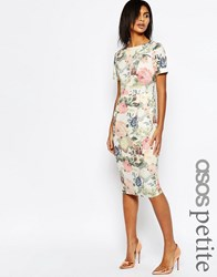 Asos Petite Occasion Floral Wiggle Dress In Cotton Sateen Multi
