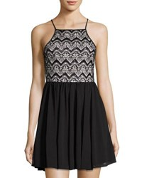 Romeo And Juliet Couture Sequined Lace Mesh Dress Black White