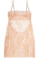 I.D. Sarrieri Chantilly Lace And Tulle Chemise Blush