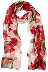 Dolce And Gabbana Floral Print Silk Chiffon Scarf Red