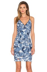 Greylin Tuluna Lace Printed Dress Blue
