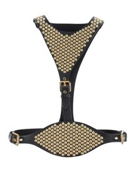 Giuseppe Zanotti Design Small Leather Goods Belts Women