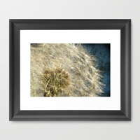 Natures Own Framed Art Print By J Coe Photography Society6
