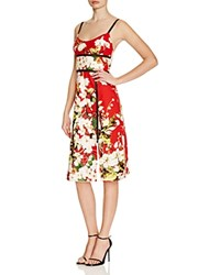 Abs By Allen Schwartz Mesh Inset Floral Print Dress Red