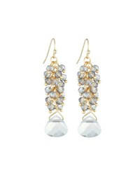 Emily And Ashley Gray Crystal Dangle Earrings Grey