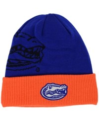 Top Of The World Florida Gators Shadow Knit Hat
