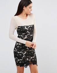 Girl In Mind Frona Floral Crochet Lace Bodycon Dress Black Nude