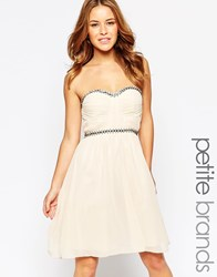 Little Mistress Petite Bandeau Skater Dress With Embellishment Mink