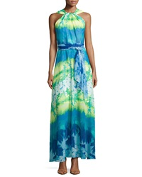Muse Floral Sleeveless Halter Maxi Dress Caribbean Blue Multi
