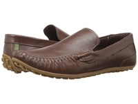 Spring Step Oyster Brown Men's Shoes