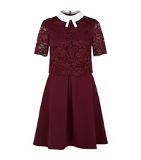 Ted Baker Dixy Lace Overlay Dress Female Burgundy