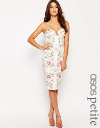 Asos Petite Pretty Rose Bandeau Pencil Dress Multi