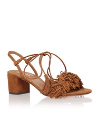 Aquazzura Wild Thing 50 Fringe Sandal Female Brown
