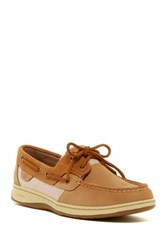 Sperry Bluefish Boat Shoe Brown