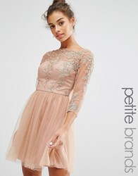 Chi Chi Petite London Allover Premium Embroidered Lace Mini Dress With Tulle Skirt Tan