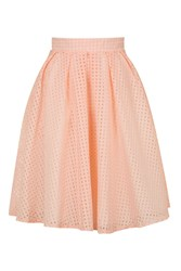 Wal G Organza Gingham Midi Skirt By Pink