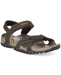 Timberland Trailray Performance Sandals Men's Shoes Brown