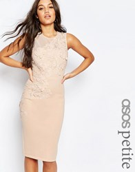 Asos Petite Flower Scuba Midi Pencil Dress Nude Pink