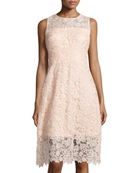Julia Jordan Lace Sleeveless Fit And Flare Dress Rose Pink
