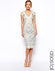 Asos Tall Premium Pencil Dress With Seashell Scallop Lace Grey