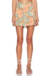 Show Me Your Mumu Skater Skirt Green