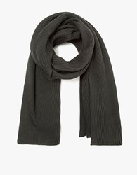 Christophe Lemaire Rib Scarf In Lichen
