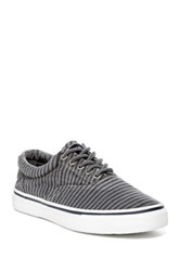Sperry Washed Striped Canvas Lace Up Gray