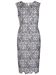 Gina Bacconi Bouquet Guipure Lace Shift Dress Spring Navy