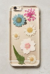 Anthropologie Pressed Flowers Iphone 6 Case Multi