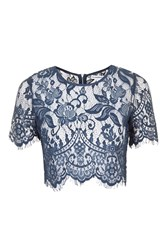 Lace Crop Top By Glamorous Petites Navy Blue