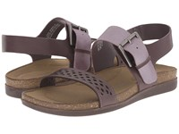 Rockport Total Motion Romilly Buckled Sandal Sparrow Smooth Silver Pearl Women's Sandals Brown