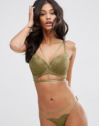 Asos Fuller Bust Becca Lace Moulded Underwire Bra Khaki Green