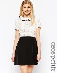 Asos Petite Broiderie Shirt Dress Black And Ivory Multi
