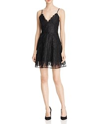 Keepsake Sundream Lace Fit And Flare Dress Black