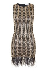 Feather Trim Scallop Sequin Dress By Rare Black