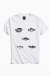 Barney Cools Fish Tee White
