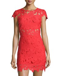 Romeo And Juliet Couture Lace Cap Sleeve Sheath Dress Red