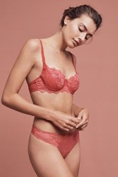 Anthropologie Aubade L'amour Briefs Medium Pink