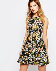 Daisy Street Skater Dress In Floral Print Multi