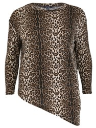Samya Plus Size Leopard Asymmetric Knit Top Multi Coloured