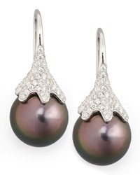 Gray South Sea Pearl And Diamond Drop Earrings 0.56Ct Eli Jewels Blue