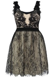 Little Mistress Curvy Cocktail Dress Party Dress Black Beige