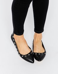 Truffle Collection Nicky Stud Point Flat Shoes Black