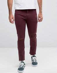 Asos Skinny 5 Pocket Trousers In Burgundy With Rips And Distressing Wine Tasting Purple