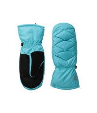 Spyder Candy Down Mitten Freeze Extreme Cold Weather Gloves Blue
